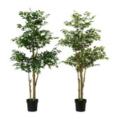 FEJKA Artificial potted plant, Weeping fig assorted species plants - 302.340.07