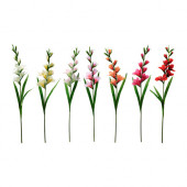 SMYCKA Artificial flower, Gladiolus, assorted colors - 101.536.48