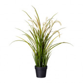 FEJKA Artificial potted plant, grass - 501.769.78