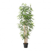 FEJKA Artificial potted plant, bamboo - 101.866.58