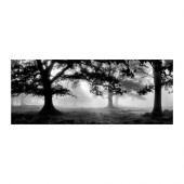 PJÄTTERYD Picture, meadow dream - 602.781.08