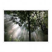 PREMIÄR Picture, crescendo of light - 001.768.53
