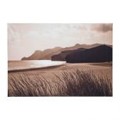PREMIÄR Picture, sea grass - 502.592.47