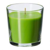 SINNLIG Scented candle in glass, Crisp apple, green - 402.363.55