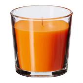 SINNLIG Scented candle in glass, Tangerine sunshine, orange - 902.363.53