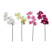 SMYCKA Artificial flower, Orchid assorted colors - 701.536.50